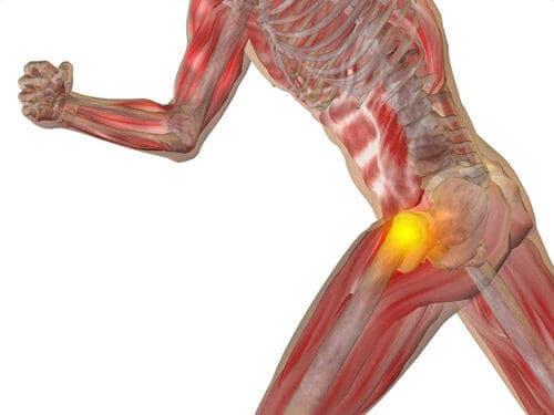 Na virilha da pela dor superior parte perna